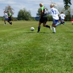 Spiel-Jagdshof-Steinach-201304
