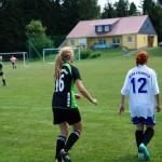 Spiel-Jagdshof-Steinach-201309