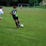 Spiel-Jagdshof-Steinach-201313