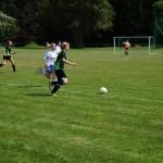 Spiel-Jagdshof-Steinach-201317